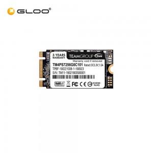 Team M.2 2280 (MS30) SSD - 256GB (TM8PS7256G0C101)