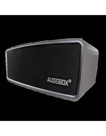Audiobox P5000BTMI Speaker-multicolour